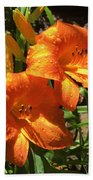 Morning Daylilies Beach Towel