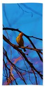 Morning Finch Beach Towel