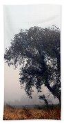 Morning Fog - The Delta Beach Towel