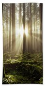 Morning Glory Beach Towel