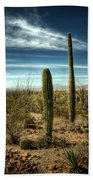 Morning In The Sonoran Desert Beach Towel