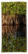 Morning Light Mangrove Reflection Beach Towel