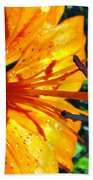 Morning Lily Beach Towel
