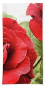 Morning Roses Beach Towel