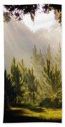 Morning Sunshine Beach Towel