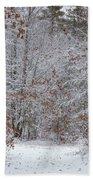 Morning Walk Beach Towel