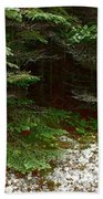Moss And Lichen Beach Towel