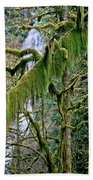 Moss At Munson Creek Beach Towel
