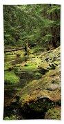 Moss By The Stream Beach Towel