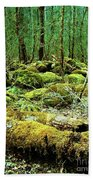 Moss Consuming The Forest Beach Towel