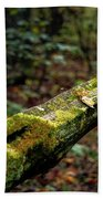Moss Covered Fence Beach Towel