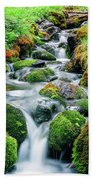 Moss Covered Stream Beach Towel