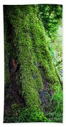 Moss On Tree Beach Towel
