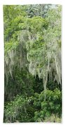 Mossy Branches Beach Towel