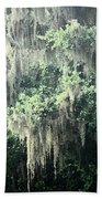 Mossy Dream Beach Towel
