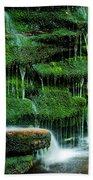 Mossy Falls - 2981 Beach Towel