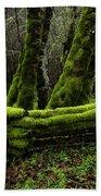 Mossy Fence 3 Beach Towel