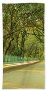 Mossy Oaks Canopy In South Carolina Beach Towel