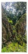Mossy Old Tree Beach Towel