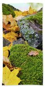 Mossy Stones And Maple Leaves Beach Towel