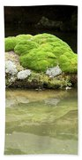 Mossy Turtle Rock Beach Towel