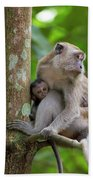 Mother And Baby Monkey Beach Towel