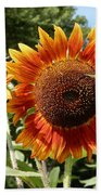 Mother And Daughter Sunflowers Beach Towel
