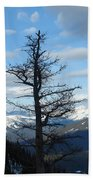Mother Natures Canvas Beach Towel