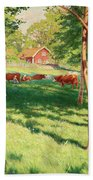 Motif From Skedevid In Tjarstad Beach Towel