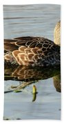 Mottled Duck Beach Towel