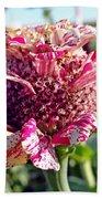 Mottled Pink Cone Flower Beach Towel
