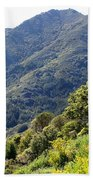 Mount Tamalpais From Blithedale Ridge Beach Towel
