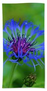 Mountain Cornflower Beach Towel by Byron Varvarigos