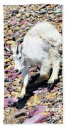 Mountain Goat3 Beach Towel