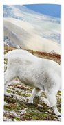 Mountain Goats 1 Beach Towel