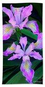 Mountain Iris In Flower California Beach Towel