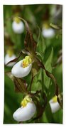 Mountain Lady Slippers Up Close Beach Towel
