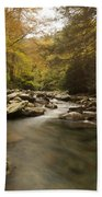 Mountain Stream 2 Beach Towel
