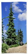 Mountain Trail - Olympic National Park Beach Towel