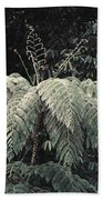 Mountain Tree Beach Towel