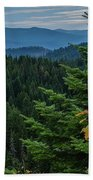 Mountains Around Priest Lake Beach Towel