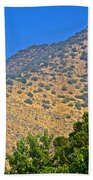 Mountainside From Wealthy Neighborhood Above Santiago-chile Beach Towel
