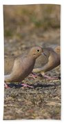 Mourning Dove Pair Beach Towel