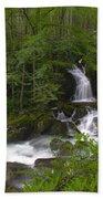 Mouse Creek Falls Beach Towel