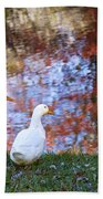 Mr And Mrs Duck Beach Towel