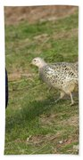 Mr And Mrs Pheasant Beach Towel