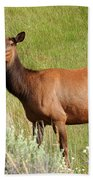 Ms. Elk Beach Towel