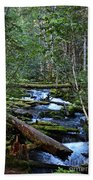 Mt Hood Wilds Beach Towel