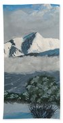 Mt Princeton Co Beach Towel