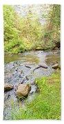 Mud Run, Pennsylvania, Pocono Mountain Stream Beach Towel